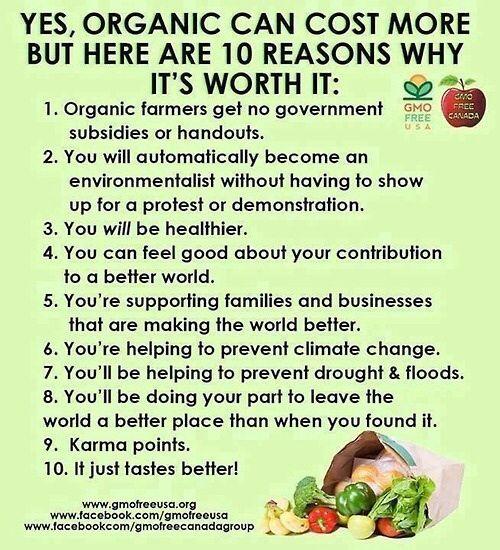 1a06b960db9bfcb09830a8fe0b343219--organic-lifestyle-healthy-lifestyle
